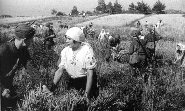 Серп і молот - смерть і голод. Як комуністи заганяли закарпатців у колгоспи  - Артефакт